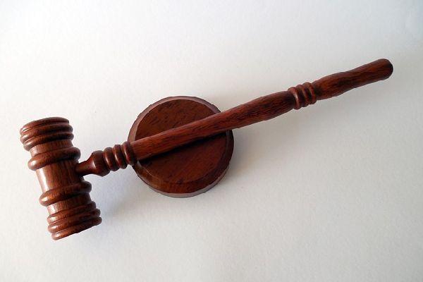 právnici, prf, hledání práce