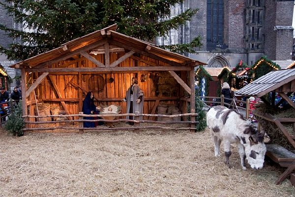 brno, trhy, vánoce, brigáda